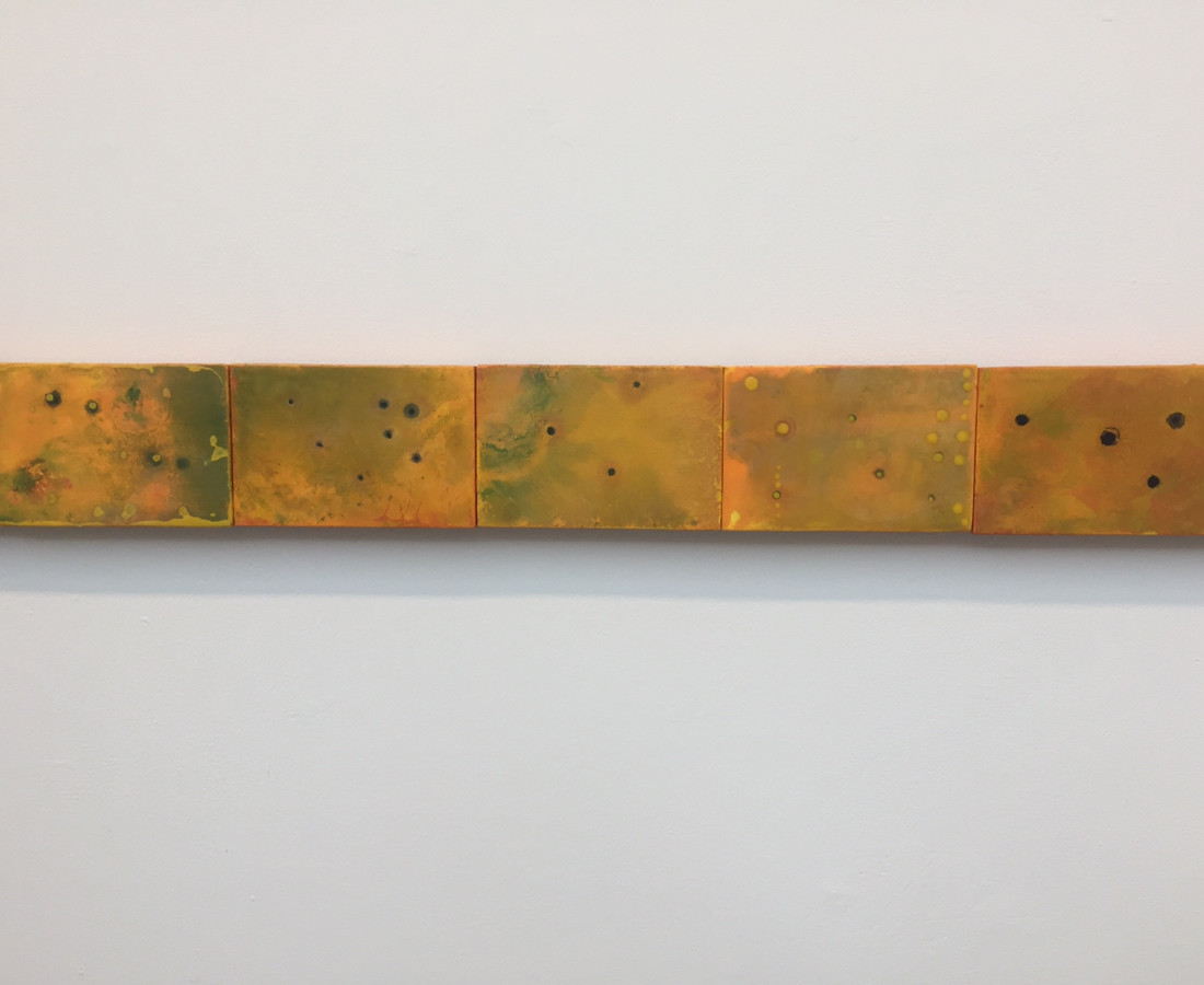 Cléa van der Grijn, Marigold Fields IV