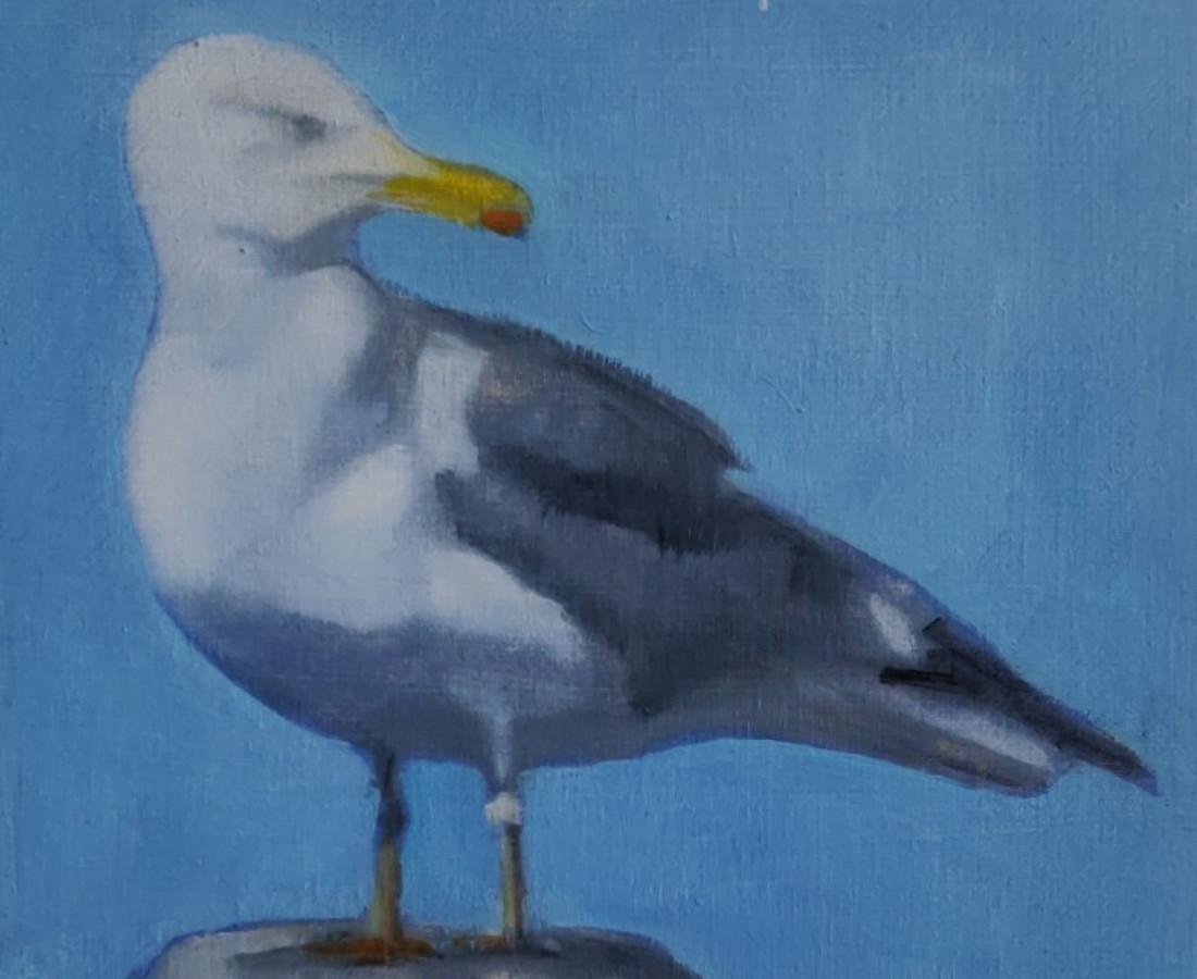 Helen O'Sullivan-Tyrrell, Monkstown Seagull II