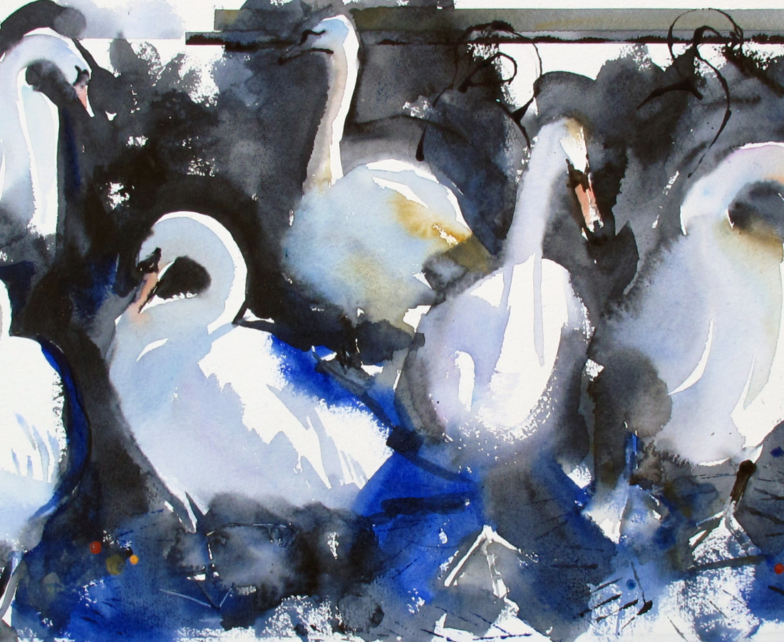 John Short, Swans in Bray Harbour (study)