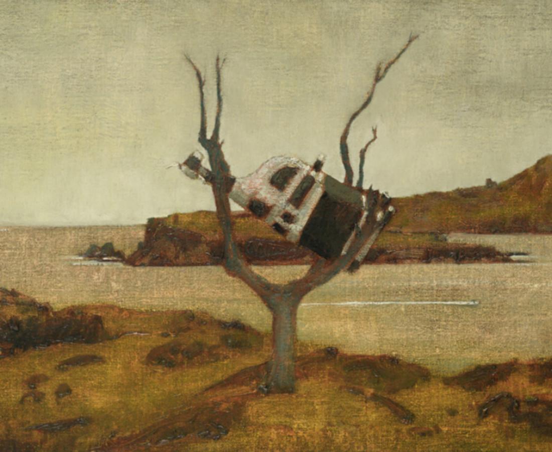 John Kelly, Cow up a Tree, South Reen III, 2017