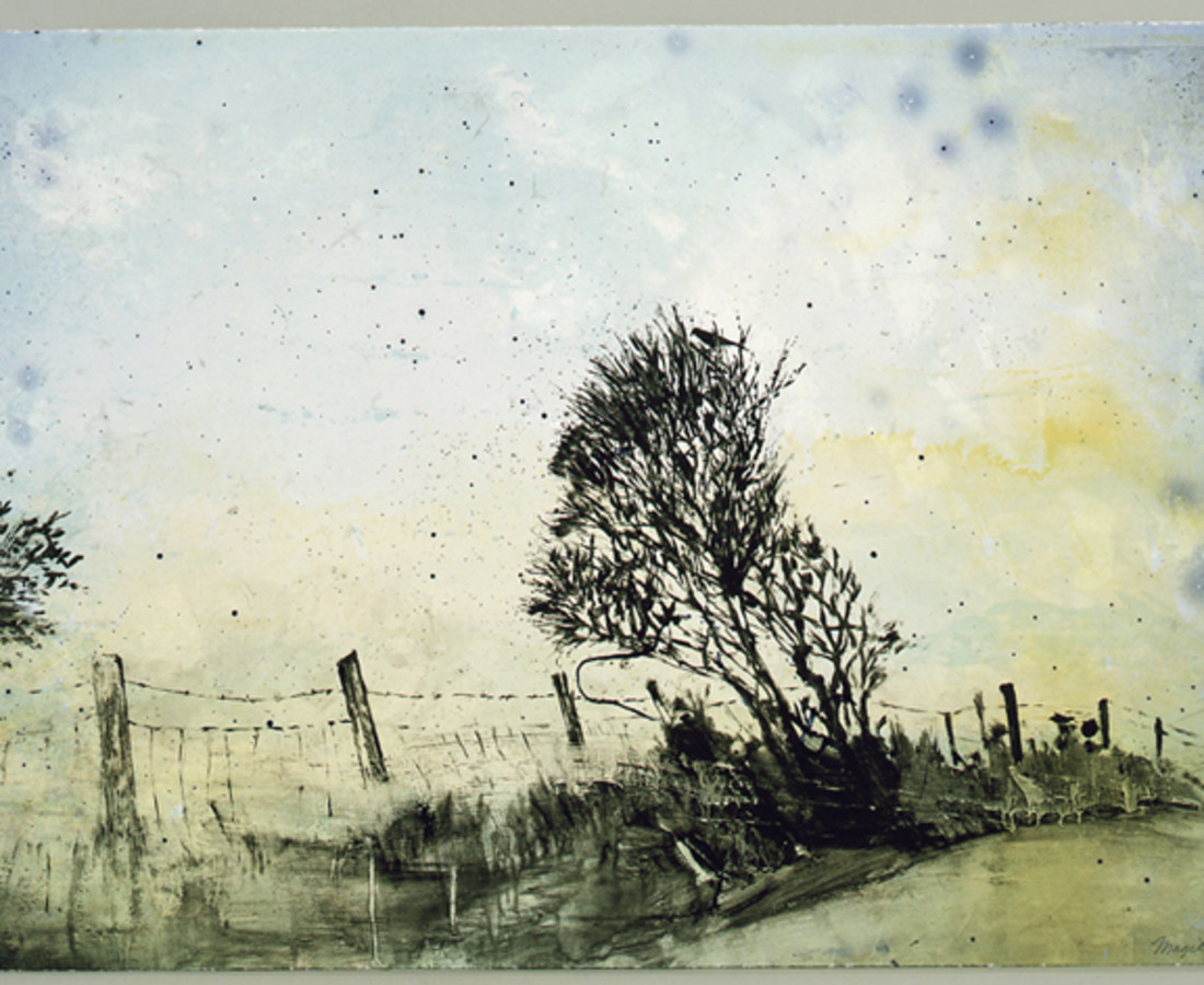 Elizabeth Magill, Thornbird, 2006