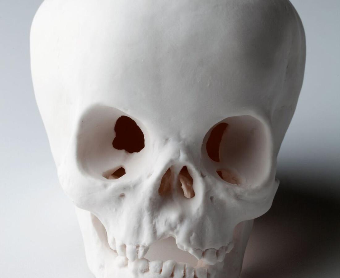 Cléa van der Grijn, Porcelain Skulls