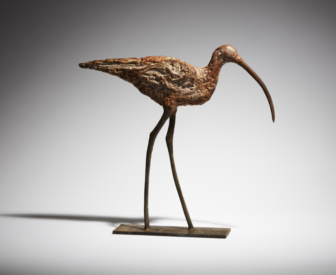Cheryl Brown, Curlew
