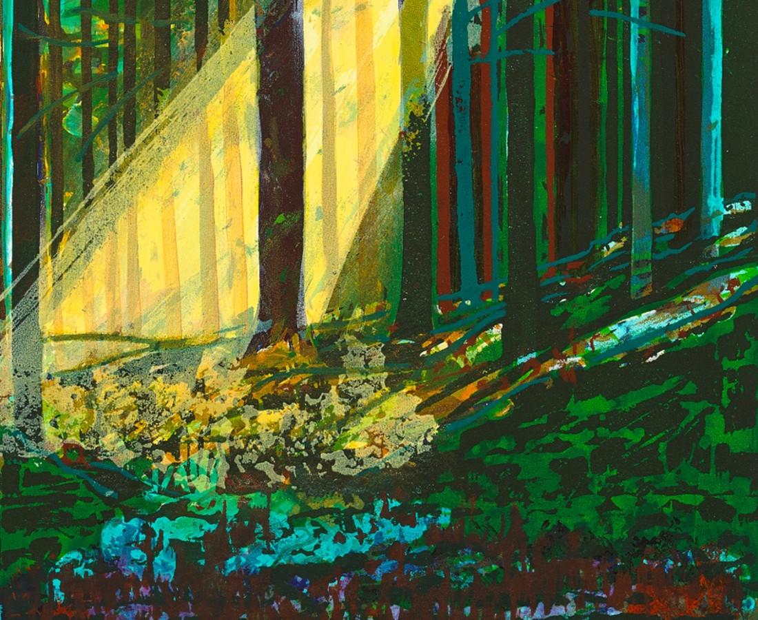 Bernadette Madden, Sunlight and Shadow