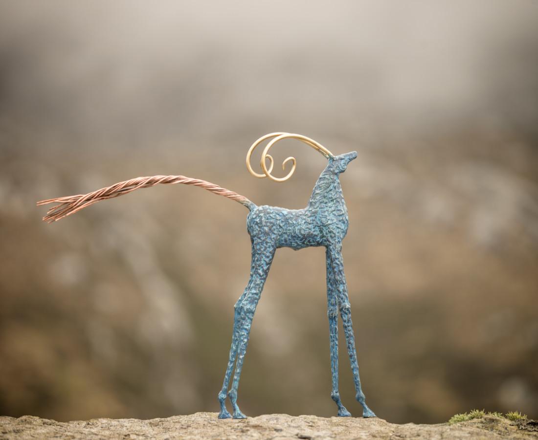 Ronan Halpin, Achill Goat