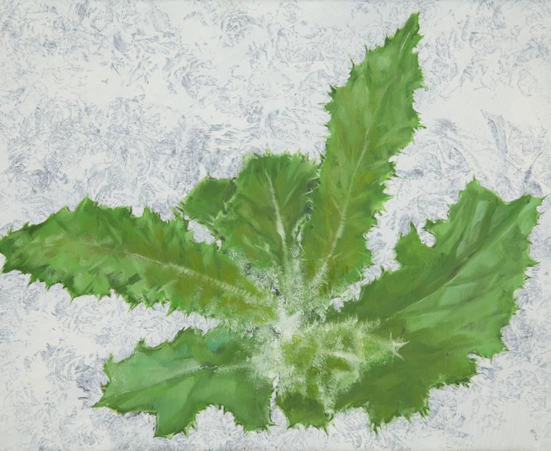 <span class=&#34;artist&#34;><strong>Bennie Reilly</strong></span>, <span class=&#34;title&#34;><em>Weed, Botanic Gardens, Dublin</em>, 2017</span>