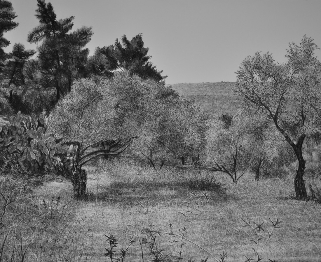 <span class=&#34;artist&#34;><strong>Samah Shihadi</strong></span>, <span class=&#34;title&#34;><em>Landscape, Olive Trees </em>, 2018</span>