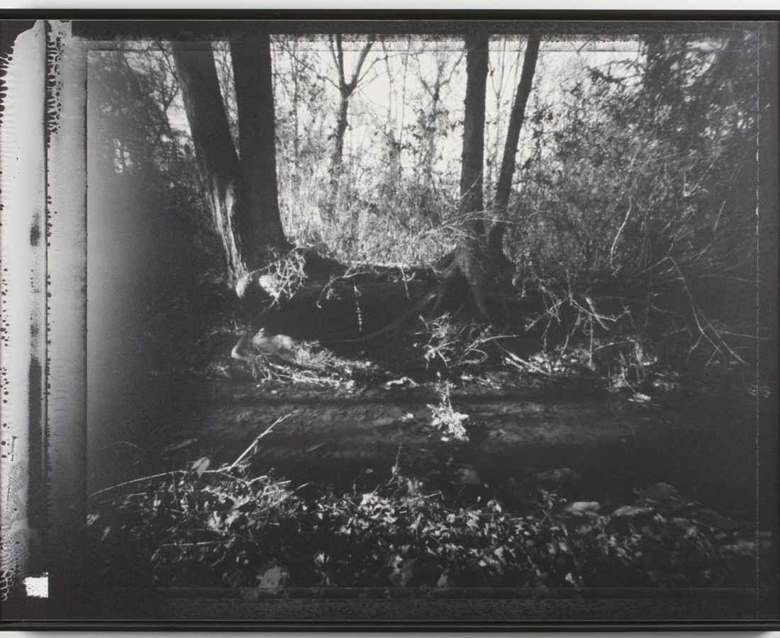 Brittany Beiersdorf, Find Me Forever Here (Virginia), 2004