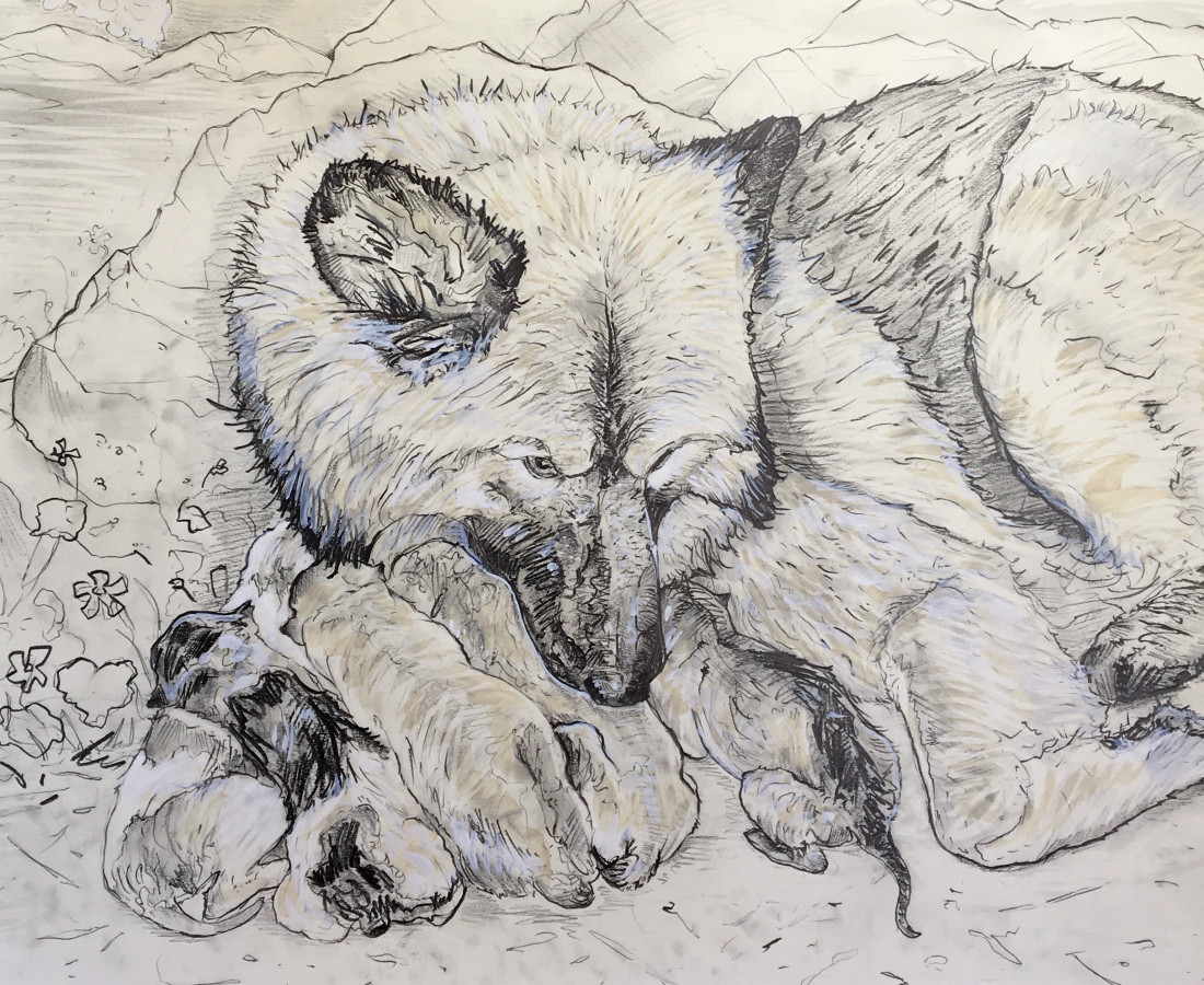 Chaz John, Portrait of Rez Dog Mother and Puppies, 2018