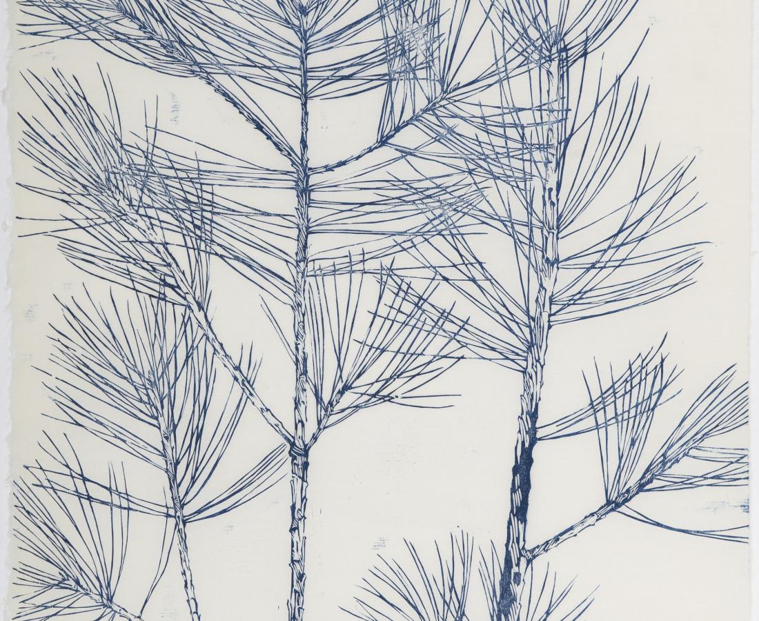 Sarah Horowitz, Blue Pines, 2020