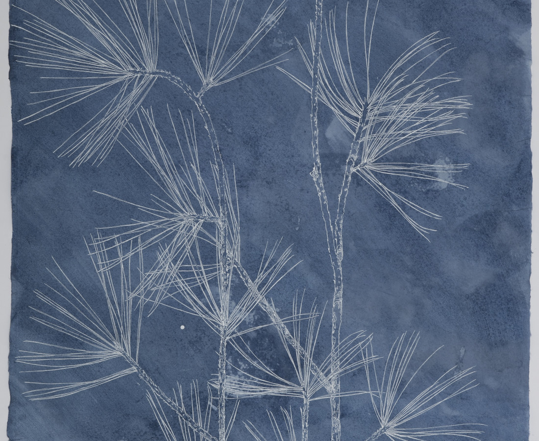 Sarah Horowitz, Dark Blue Pines II, 2021