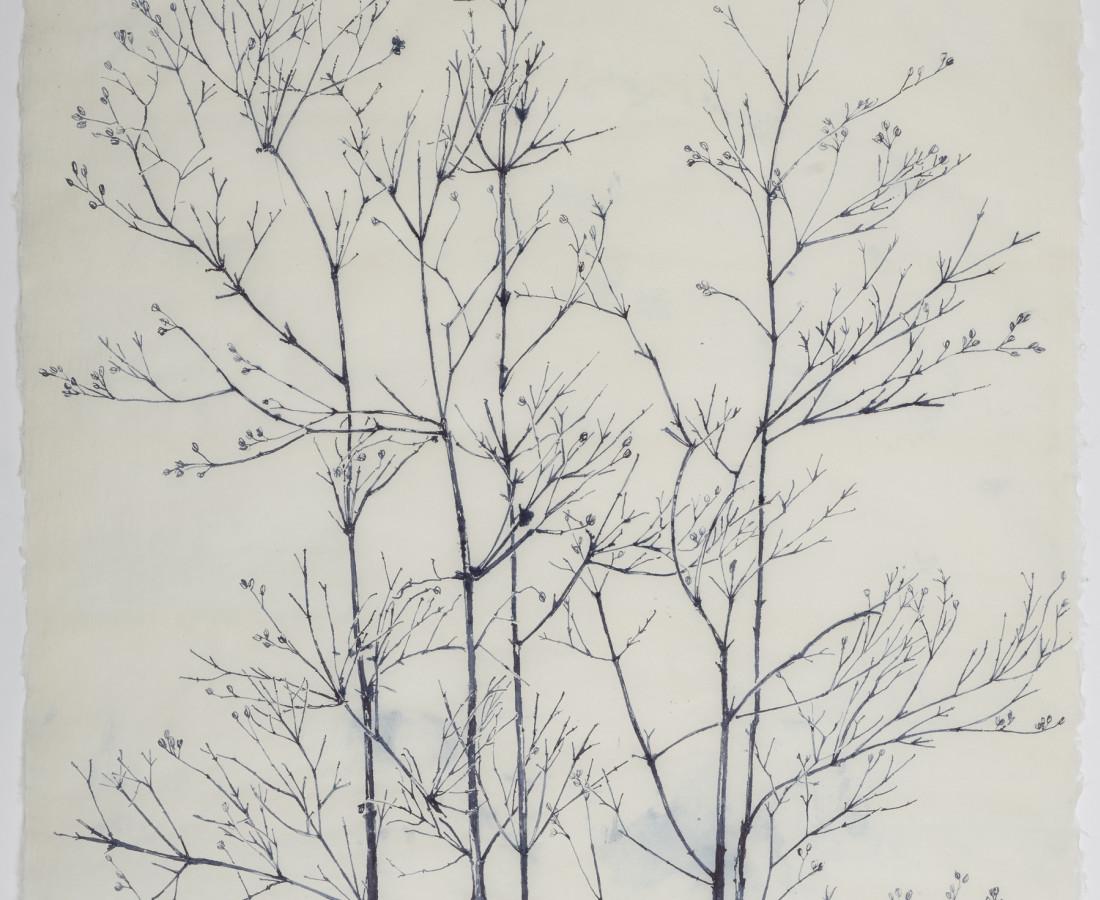 Sarah Horowitz, Blue Branches , 2021