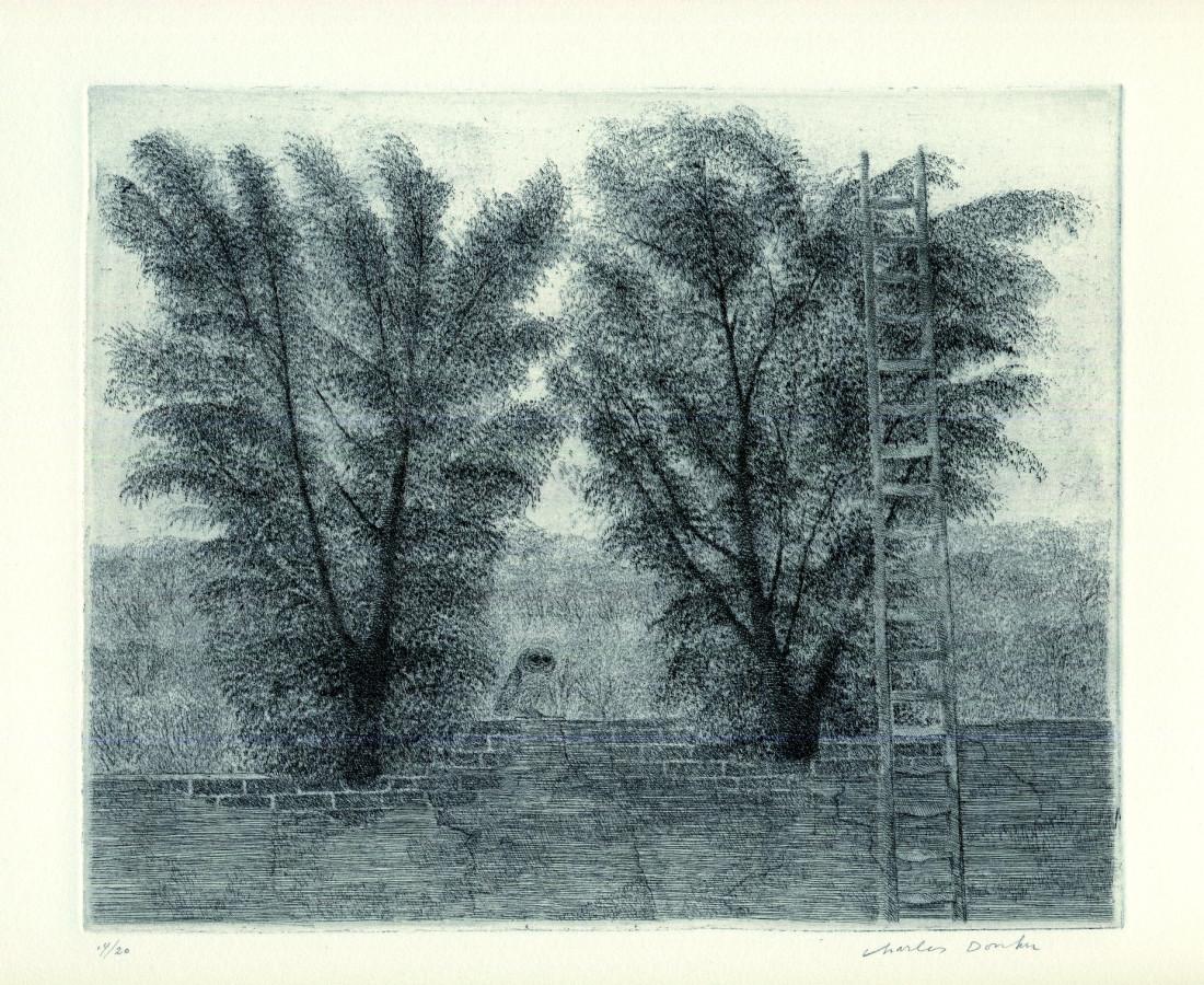 Charles Donker, Chevêche et échelle. , 1968 (ca)