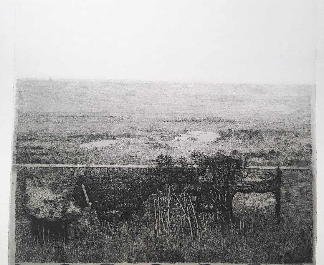 Charles Donker, Het waddeneiland Griend (Griend, l'île des Wadden, archipel des îles de la Frise), 1972-1974