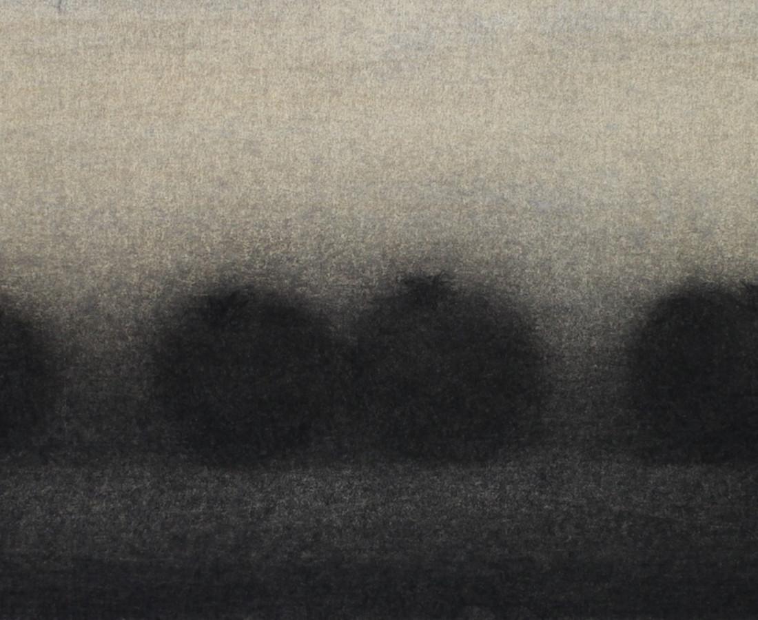 Nicolas Poignon, Grenades dans l'ombre, 2010