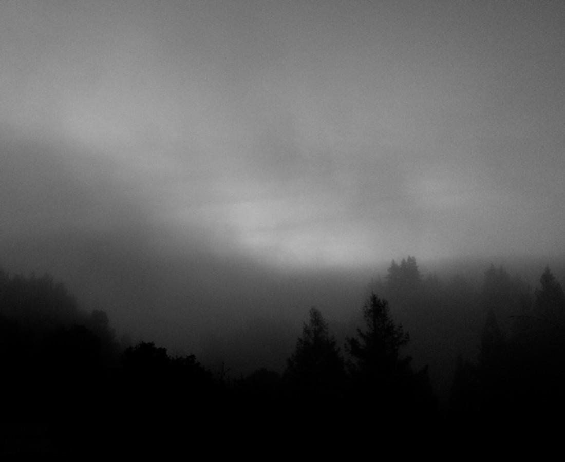 Miya Ando Fog - hwy 280, 2014