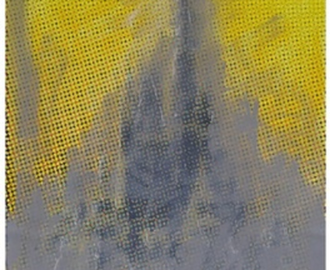 Shelter Serra Disney Castle (Yellow), 2014