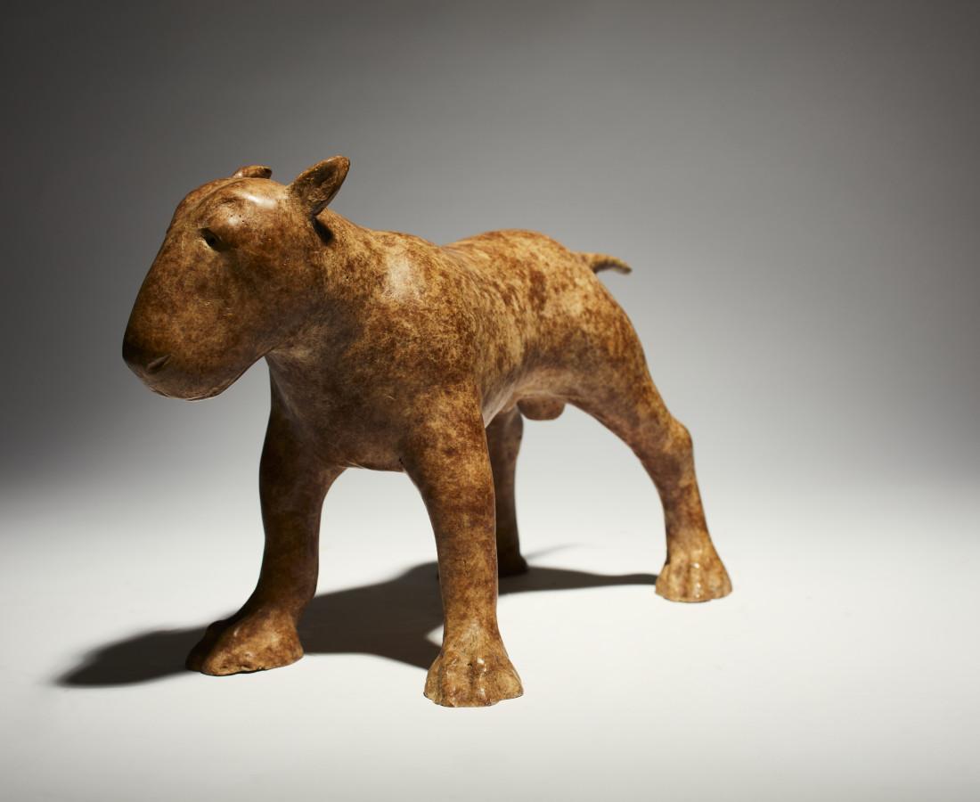 Anthony Scott RUA Brindle Bull Terrier
