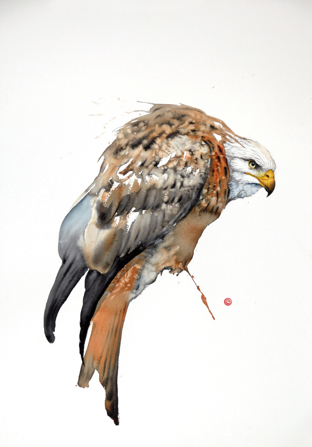 <span class=&#34;artist&#34;><strong>Karl Martens</strong></span>, <span class=&#34;title&#34;><em>Red Kite I (Unframed)</em></span>