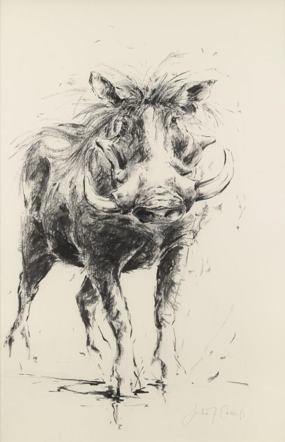 """<span class=""""artist""""><strong>Julia Cassels</strong></span>, <span class=""""title""""><em>Warthog</em></span>"""