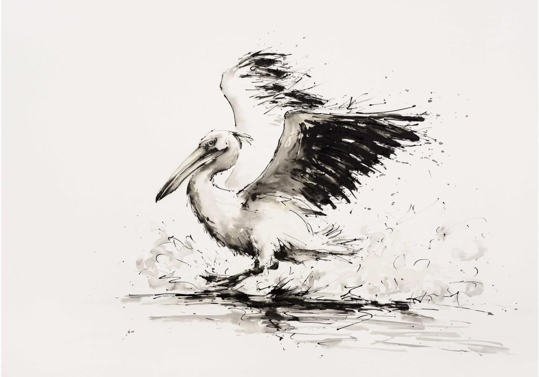 """<span class=""""artist""""><strong>Julia Cassels</strong></span>, <span class=""""title""""><em>Pelican</em></span>"""