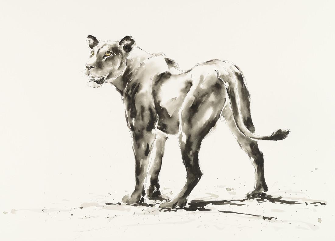 """<span class=""""artist""""><strong>Julia Cassels</strong></span>, <span class=""""title""""><em>Lioness</em></span>"""