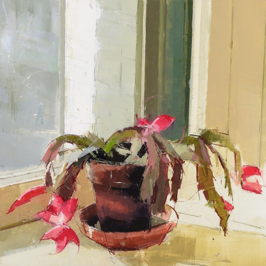 Lisa Breslow  Cactus, 2014  oil and pencil on panel  16 x 16 in