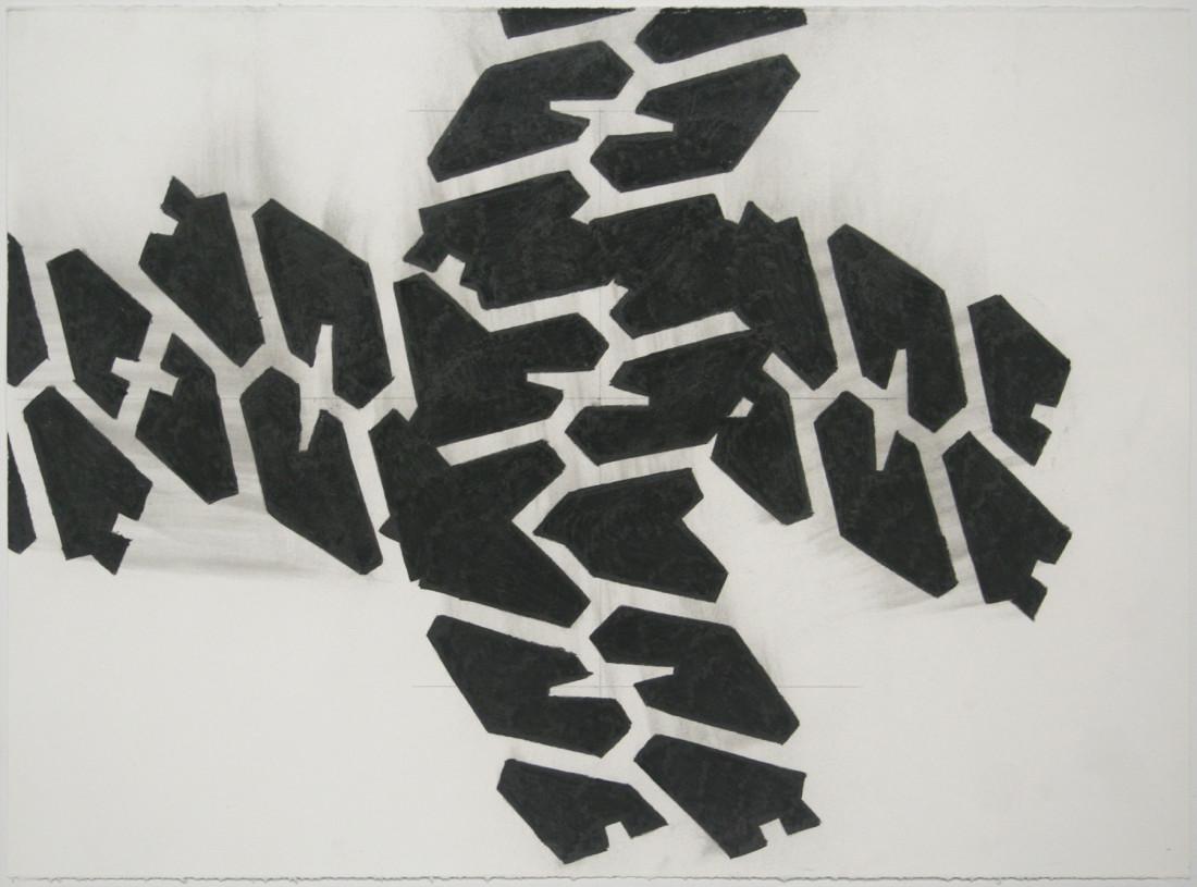 Noah Loesberg, Tire Tread #4, 2011