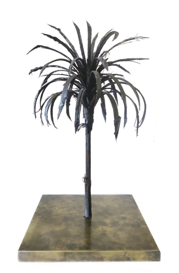Douglas White, Black Palm, 2018