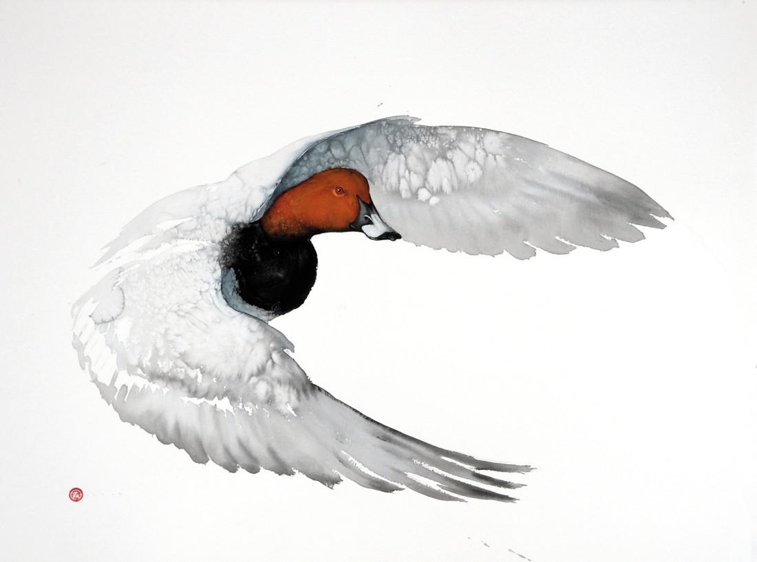 "<span class=""artist""><strong>Karl Martens</strong></span>, <span class=""title""><em>Pochard Flying (Unframed)</em></span>"