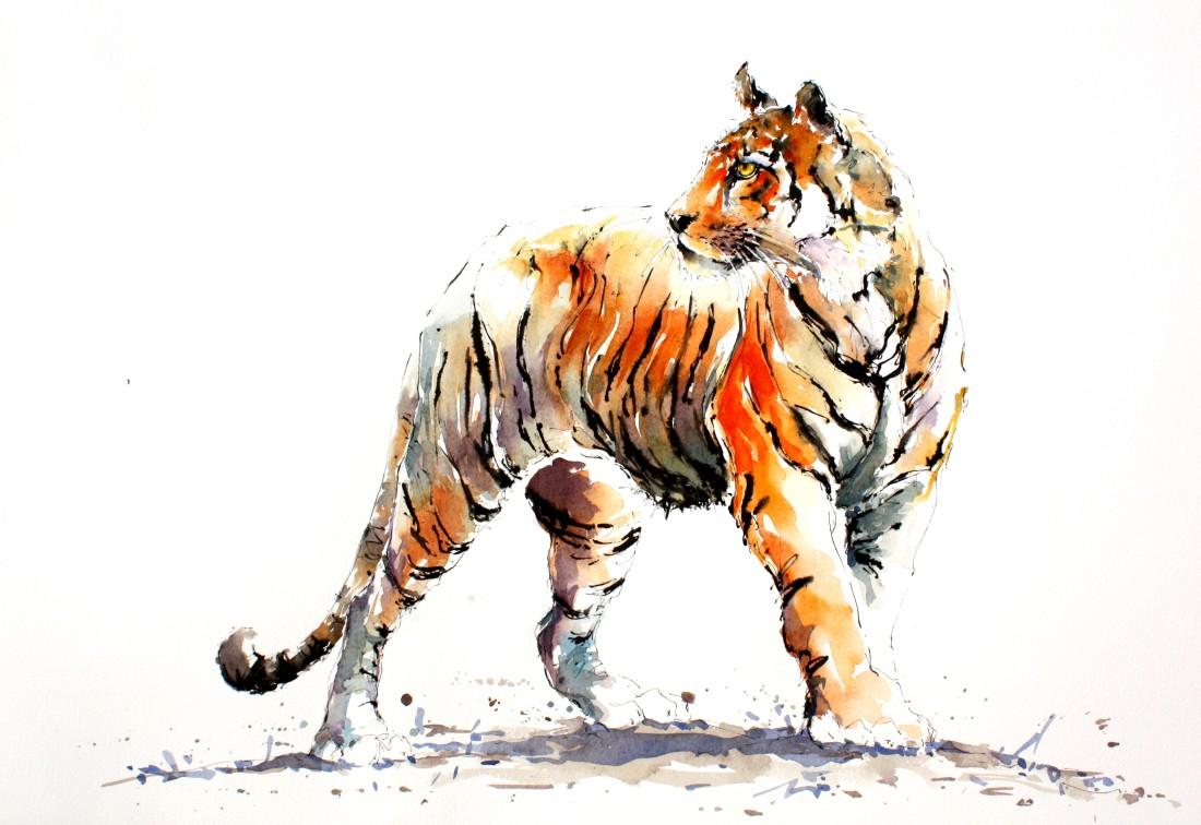 <span class=&#34;artist&#34;><strong>Julia Cassels</strong></span>, <span class=&#34;title&#34;><em>Tiger Stripes</em></span>