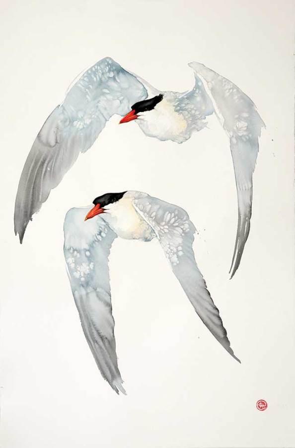 <span class=&#34;artist&#34;><strong>Karl Martens</strong></span>, <span class=&#34;title&#34;><em>Caspian Terns</em></span>