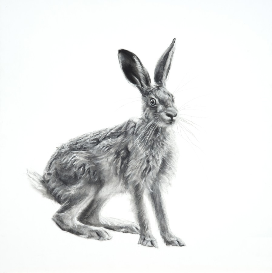 <span class=&#34;artist&#34;><strong>Lucy Boydell</strong></span>, <span class=&#34;title&#34;><em>Wild Hare</em></span>