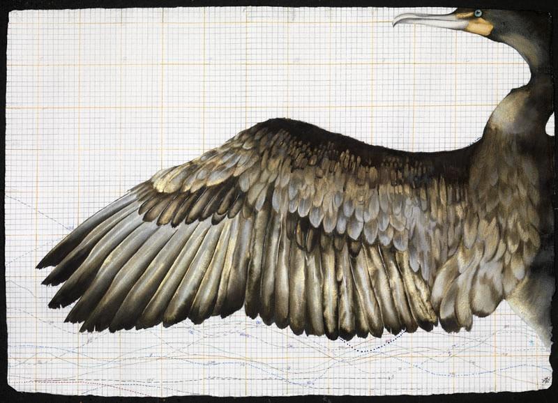 <span class=&#34;artist&#34;><strong>Nikki Stevens</strong></span>, <span class=&#34;title&#34;><em>Phoenix Rising</em></span>
