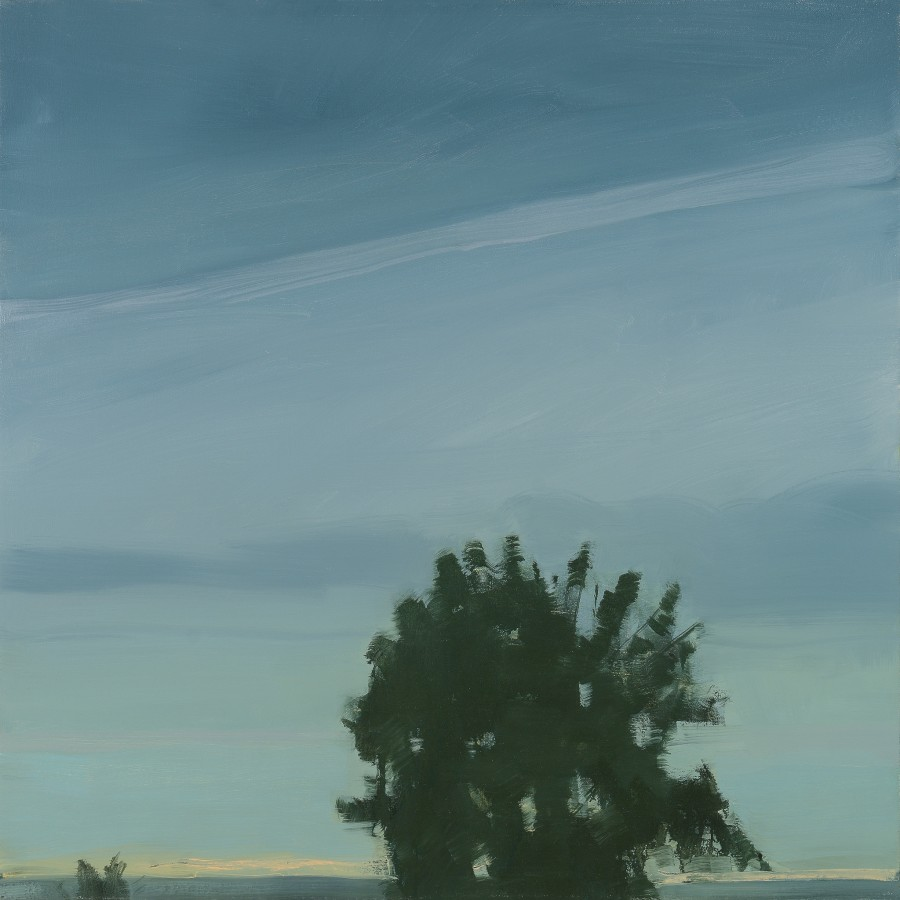 Sara MacCulloch  Tree Silhouette Sky, 2012  oil on canvas  36 x 36 in.