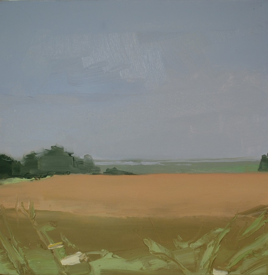 Sara MacCulloch Fields and Basin, 2014 oil on canvas 16 x 16 in.