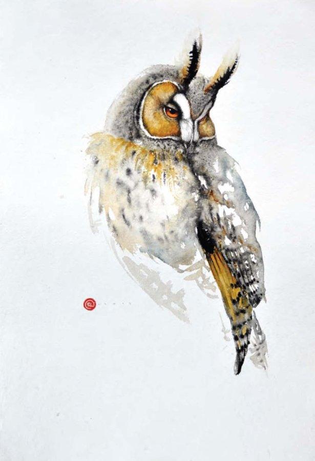<p>Horned Owl</p>