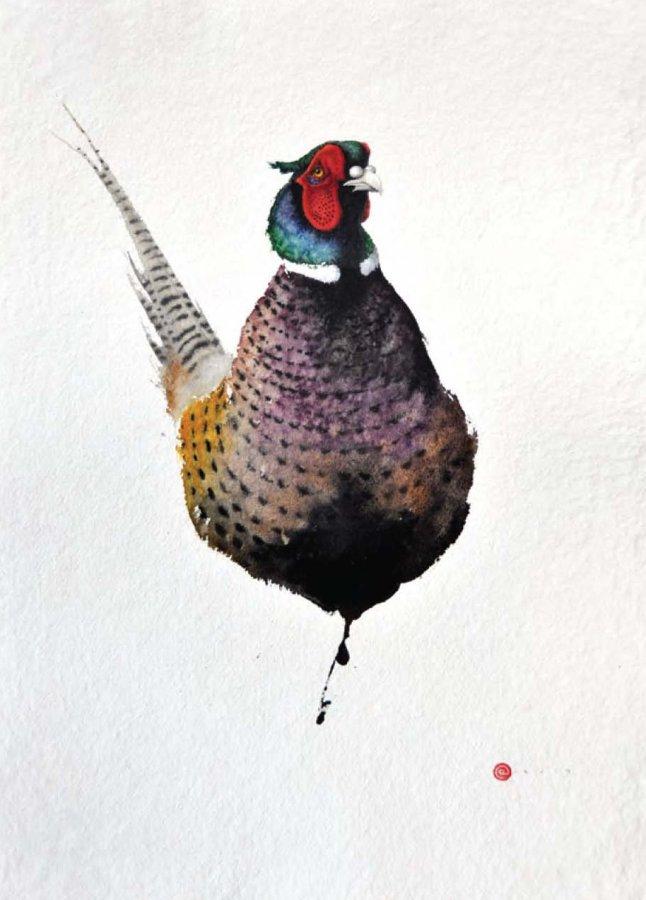 <p>Pheasant</p>