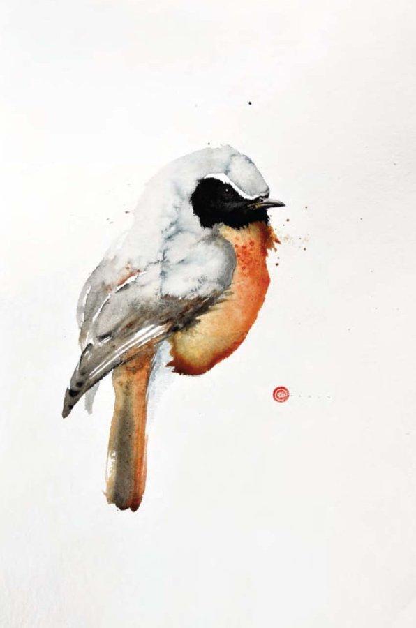 <p>Redstart</p>