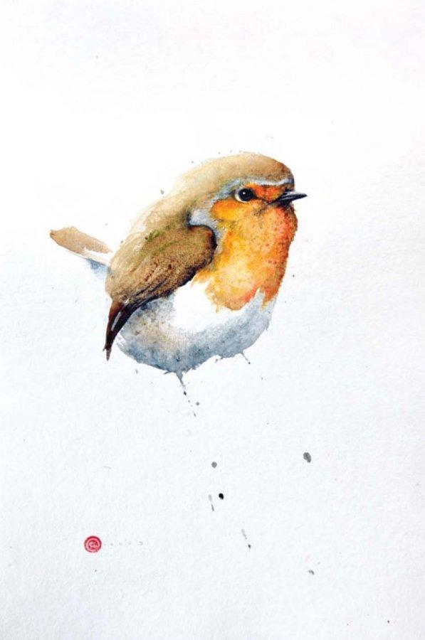 <p>Robin</p>