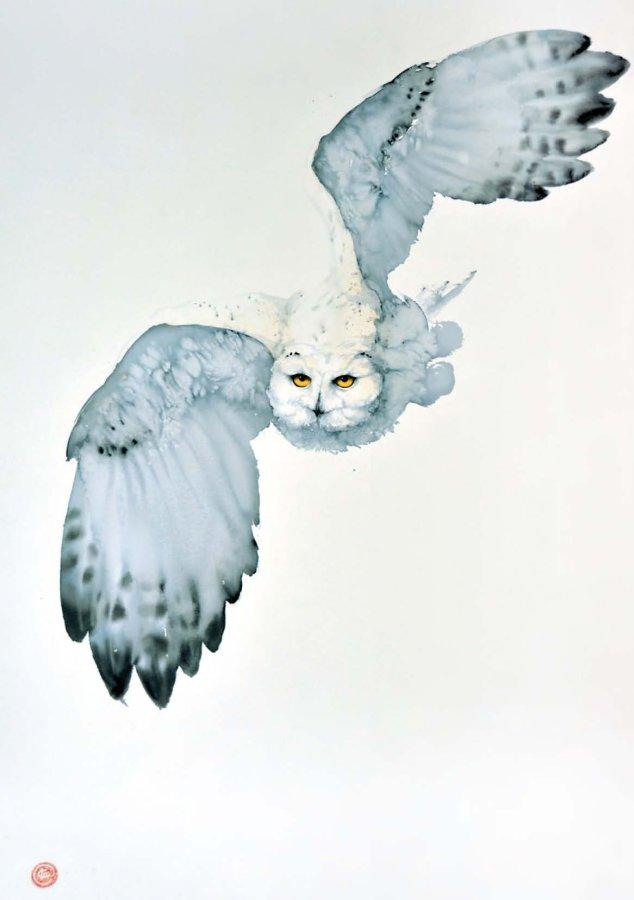 <p>Snowy Owl I</p>