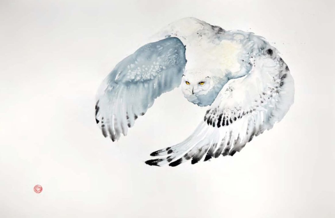<p>Snowy Owl</p>