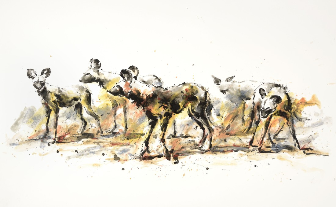 <p>Wild Dogs of Pretoriouskop, &#163;2,650</p>