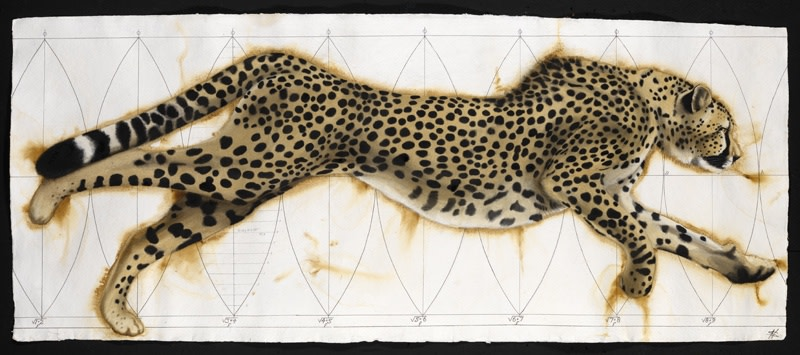 "<p>Vortex Cheetah, Watercolour, 37"" x 77"", Price: £6,500</p>"