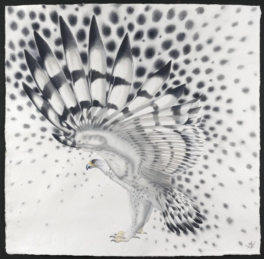 """<p>Molecule - Bird, Watercolour, 37"""" x 37"""", Price: £4,500</p>"""