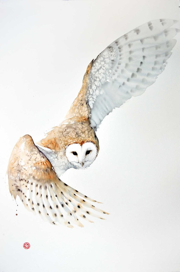 <p>Barn Owl</p><p>Watercolour</p><p>59&#34; x 39 1/2&#34;</p>