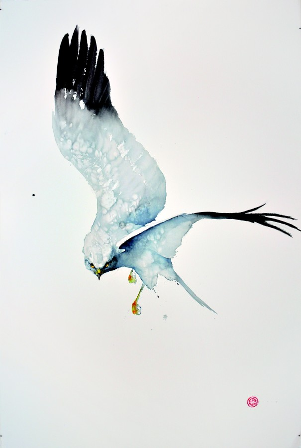 <p>Northern Harries</p><p>Watercolour</p><p>59&#34; x 39 1/2&#34;</p>