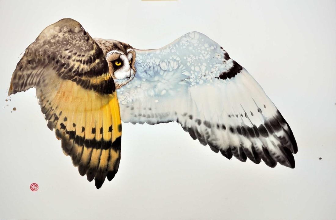 <p>Short Eared Owl I</p><p>Watercolour</p><p>39 1/2&#34; x 59&#34;</p>