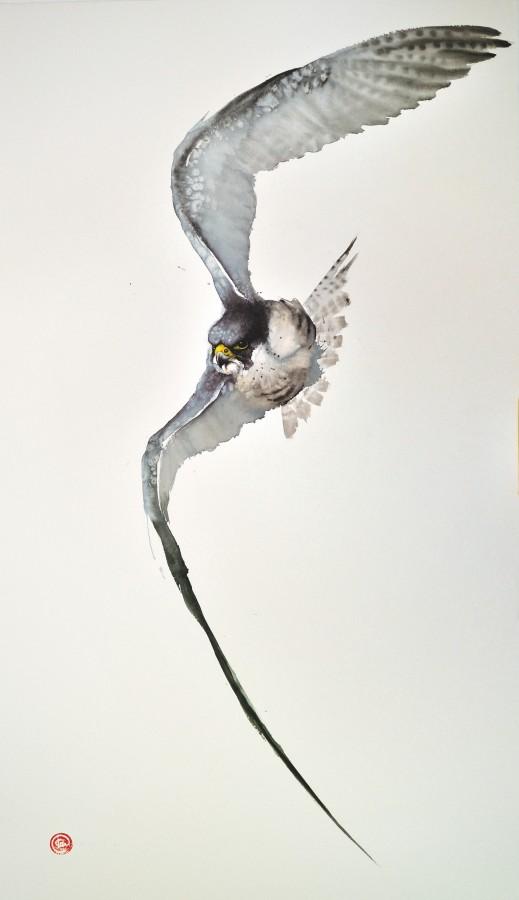 <p>Peregrine Falcon I</p><p>Watercolour</p><p>59&#34; x 39 1/2&#34;</p>