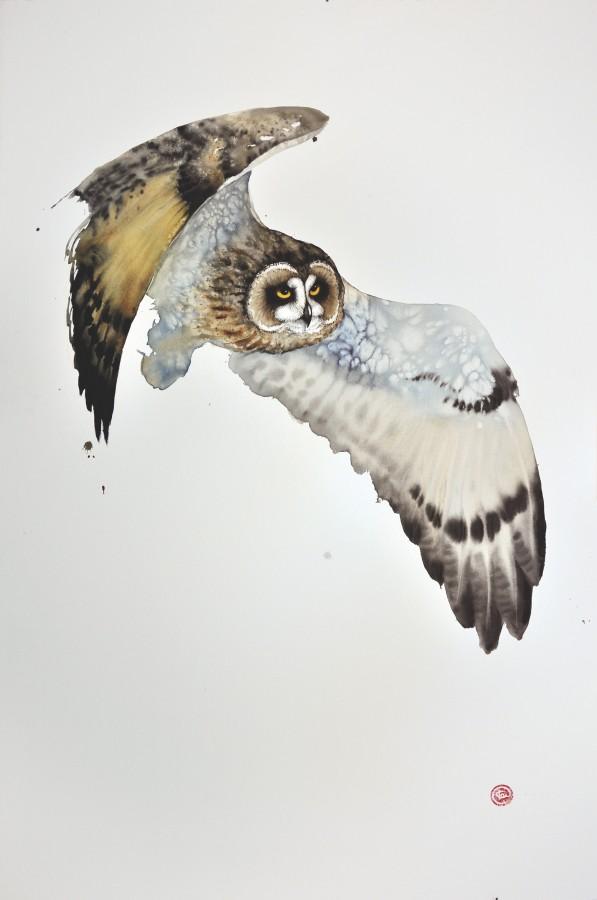 <p>Short Eared Owl II</p><p>Watercolour</p><p>59&#34; x 39 1/2&#34;</p>